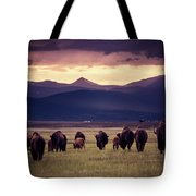 Bison Herd Into The Sunset Tote Bag