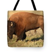 Bison Huffing And Puffing For Herd Tote Bag