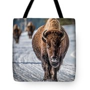 Bison In The Road - Yellowstone Tote Bag
