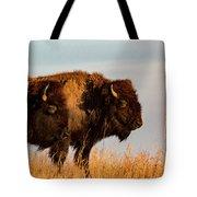 Bison Pair Tote Bag