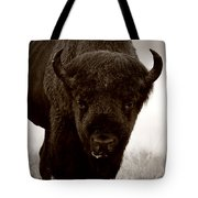 Bison Showdown Tote Bag