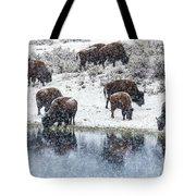 Bison Snow Reflecton Tote Bag