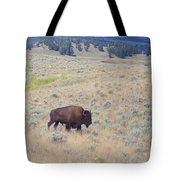 Bison Trail Tote Bag