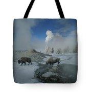 Bison Walking In Front Of Lion Geyser Tote Bag