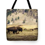 Bison With Calf Tote Bag