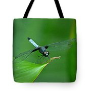 Black And Blue Dragonfly Tote Bag