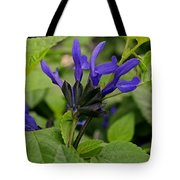 Black And Blue Salvia Tote Bag