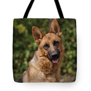 Black And Red German Shepherd Dog Tote Bag