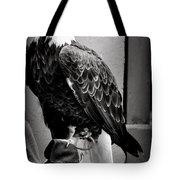 Black And White Bald Eagle Tote Bag