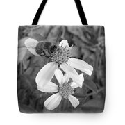 Black And White Bee Tote Bag