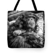 Black And White Chimp Tote Bag