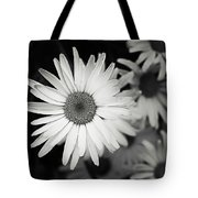 Black And White Daisy 1 Tote Bag