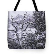 Black And White Day Tote Bag