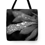 Black And White Dewy Petals Tote Bag