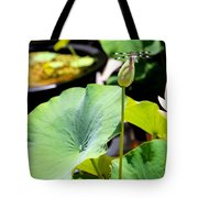 Black And White Dragonfly On A Lotus Bud Tote Bag