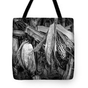 Black And White Ear Of Corn On The Stalk Tote Bag