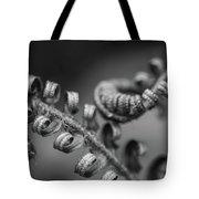 Black And White Ferns Tote Bag