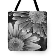 Black And White Gerber Daisies 2 Tote Bag