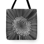 Black And White Gerber Daisy 4 Tote Bag