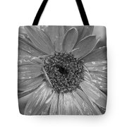 Black And White Gerbera Daisy Tote Bag