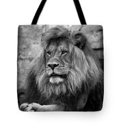 Black And White Lion Pose Tote Bag