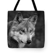 Black And White Mexican Wolf #4 Tote Bag