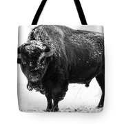 Black And White Of A Massive Bison Bull In The Snow  Tote Bag