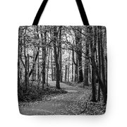 Black And White Path In Autumn  Tote Bag