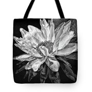 Black And White Reflection Tote Bag