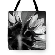 Black And White Sinflower 6 Tote Bag