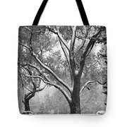 Black And White Snowy Landscape Tote Bag