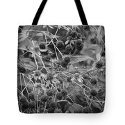Black And White Sun Flowers  Tote Bag