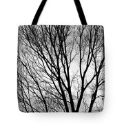 Black And White Tree Branches Silhouette Tote Bag