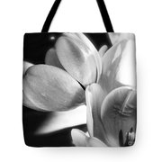 Black And White Tulips #4 Tote Bag