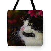 Black And White Tuxedo Cat Tote Bag