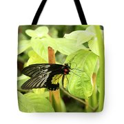 Black And Yellow Butterfly Tote Bag