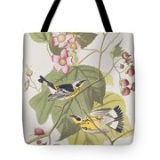 Black And Yellow Warblers Tote Bag