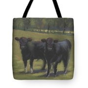 Black Angus Buddies Tote Bag