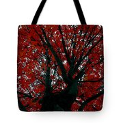 Black Bark Red Tree Tote Bag