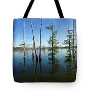 Black Bayou Lake 2 Tote Bag