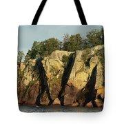 Black Beach Island Tote Bag