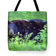 A Florida Black Bear Tote Bag