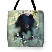 Catch of the Day Black Bear Tapestry Tote Bag 16 X 14