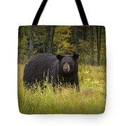 Black Bear In The Grass Tote Bag