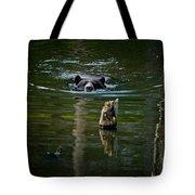 Black Bear Pictures 104 Tote Bag