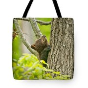Black Bear Pictures 82 Tote Bag