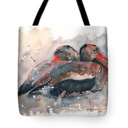 Black Bellied Whistling Duck Tote Bag
