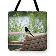 Black-billed Magpie Pica Hudsonia Tote Bag