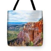 Black Birch Canyon Tote Bag