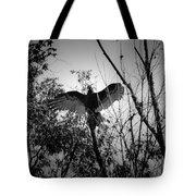 Black Buzzard 4 Tote Bag